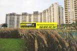 Rent Apartment in Belgravia 010