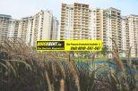 Rent Apartment in Belgravia 012