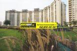 Rent Apartment in Belgravia 015