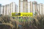 Rent Apartment in Belgravia 017