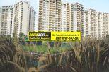 Rent Apartment in Belgravia 019