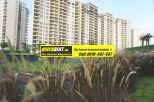 Rent Apartment in Belgravia 020