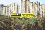 Rent Apartment in Belgravia 021