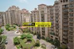 Beverly Park Gurgaon for Rent 04