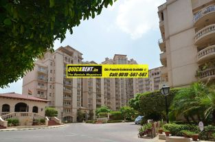 Beverly Park Gurgaon for Rent 05