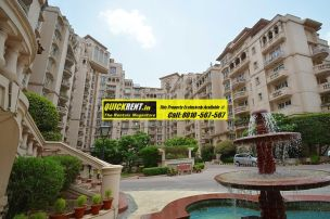 Beverly Park Gurgaon for Rent 07