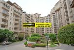 Beverly Park Gurgaon for Rent 09