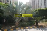 Office Space for Rent in Time Tower Gurgaon 04