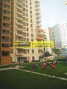 Apartments for Rent in Pioneer Park 02