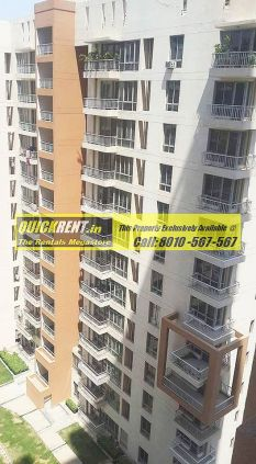 Apartments for Rent in Pioneer Park 12