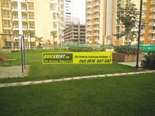Pioneer Park for Rent 03