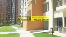Pioneer Park for Rent 14