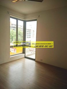 Pioneer Park for Rent 29