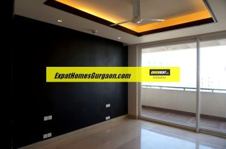 expats-in-gurgaon