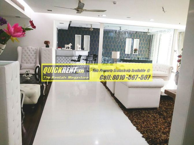 Fully Furnished Apartment in DLF Magnolias
