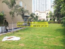 villa-for-rent-in-palm-springs-gurgaon-02