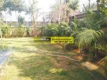 villa-for-rent-in-palm-springs-gurgaon-21