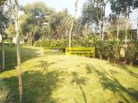 villa-for-rent-in-palm-springs-gurgaon-22
