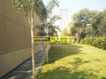 villa-for-rent-in-palm-springs-gurgaon-24