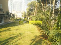 villa-for-rent-in-palm-springs-gurgaon-29
