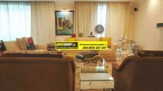 Furnished Apartment in DLF Magnolias 17