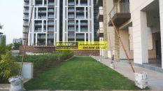Apartments for Rent in Tata Primanti 12