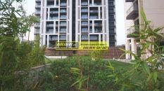 Apartments for Rent in Tata Primanti 13