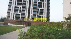 Apartments for Rent in Tata Primanti 19