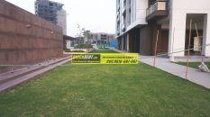 Apartments for Rent in Tata Primanti 23