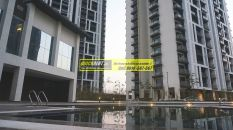 Apartments for rent in Tata Primanti 82