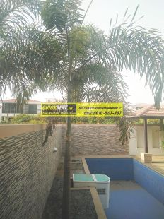Tatvam Villas for Rent 29