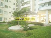 Apartments for Rent in Palm Drive Gurgaon03