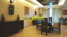 Furnished Apartment in DLF Aralias 01