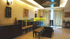 Furnished Apartment in DLF Aralias 17