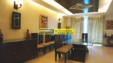 Furnished Apartment in DLF Aralias 18