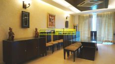 Furnished Apartment in DLF Aralias 19