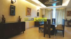 Furnished Apartments in DLF Aralias 02