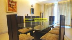 Furnished Apartments in DLF Aralias 03