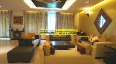 Furnished Apartments in DLF Aralias 19