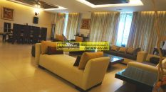 Furnished Apartments in DLF Aralias 24