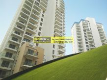 Apartments for Rent in M3M Merlin 06