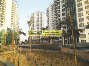Flats for Rent M3M Merlin 31