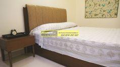 Furnished Apartment Gurgaon 07